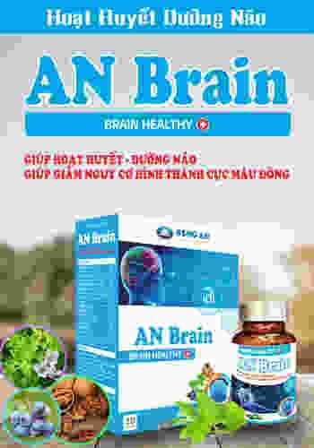 banner-an-brain